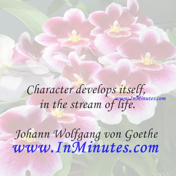 Character develops itself in the stream of life.Johann Wolfgang von Goethe