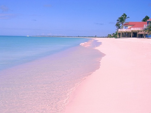 Pink Sand Beach ( Bahamas)   The Best Beaches in the Caribbean
