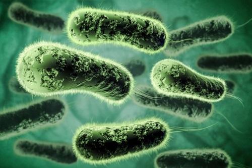 10 Ways Parasites