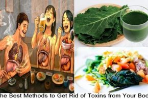 The Best Methods to Get Rid of Toxins from Your Body