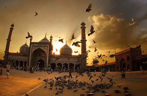 Jama Masjid Characteristic Attractions in Delhi