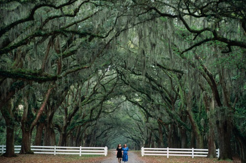 Savannah (GA) United States  city images : Savannah Georgia – America's Most Haunted City