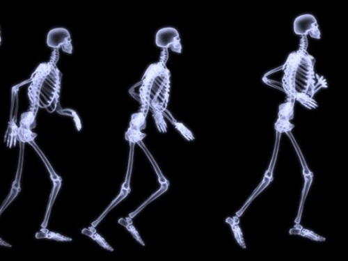 Top 10 Tips for Having Healthier Bones