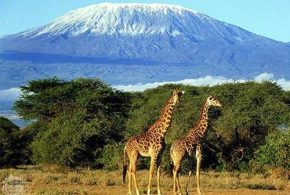 Top Beautiful Destinations in Africa