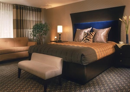 Best Hotels in Washington DC  Hotel Madera
