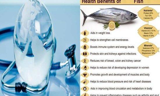 Top Ten Health Benefits Of Fish