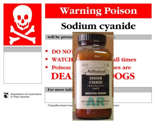 Top Ten Deadliest Poisons In The World