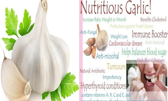 Top Ten Health Benefits Of Garlic