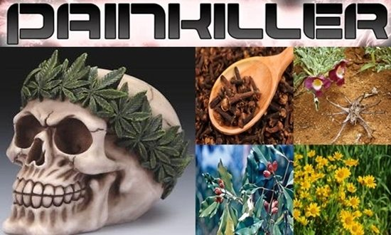 Natural Painkiller To Use Right Away
