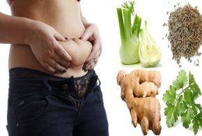Best Herbs To Help You Lose Weight
