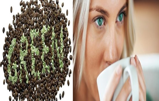 Can Green Coffee Bean help you lose more fat