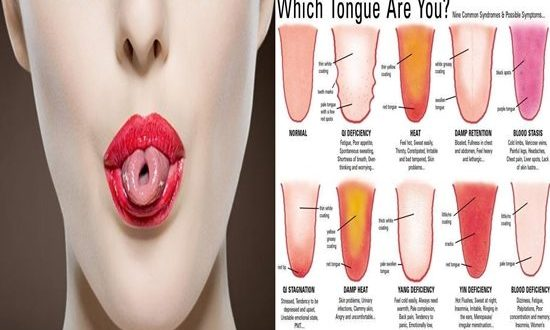 Facts to Know about Your Tongue