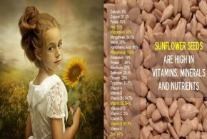 Six Health Benefits Of Sunflower Seeds