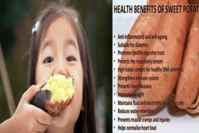 Eight Little Known Health Benefits Of Sweet Potato