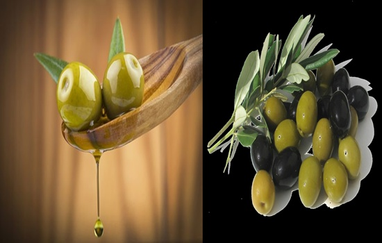 Reasons Why You Should Eat More Olives