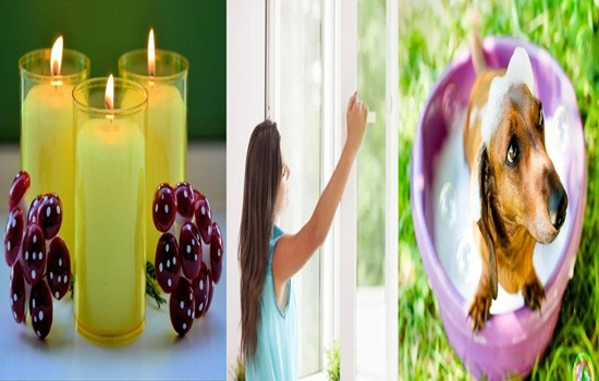 Tips To Make Your Home Smell Sweet