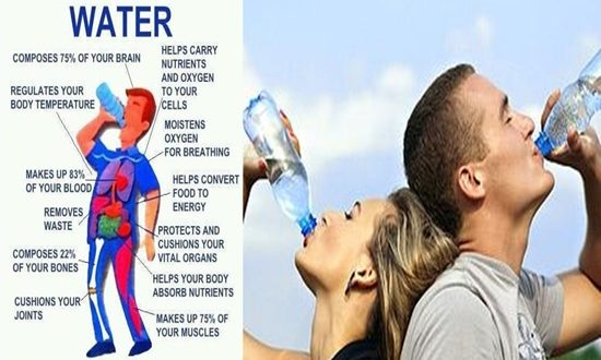 Myths about Staying Hydrated
