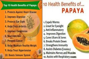 Top 10 Health Benefits of Papayas, The Fruit of the Angels