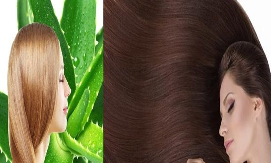 Treating Your Hair With Aloe Vera