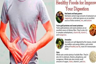 Best Foods For Digestion