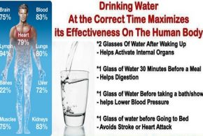 The Secret Of Life, Water And Its Amazing Health Benefits