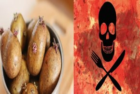BEWARE OF THE DEADLY FOODS YOU MIGHT COME ACROSS, PART II