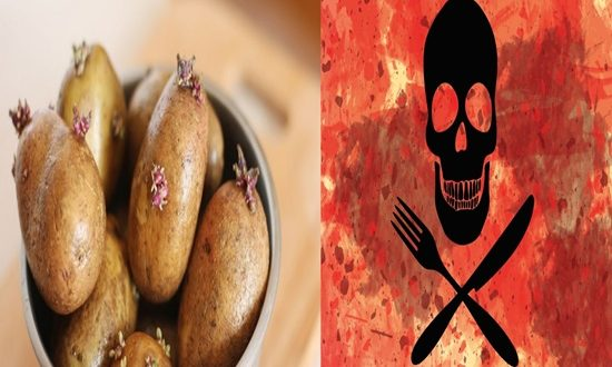 BEWARE OF THE DEADLY FOODS YOU MIGHT COME ACROSS