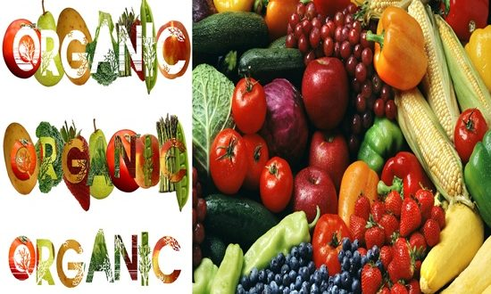 ORGANIC FOODS THE SAFEST CHOICE FOR YOU & YOUR FAMILY