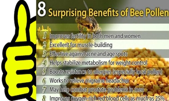 BEE POLLEN & ITS HEALTH BENEFITS
