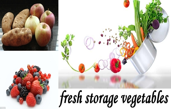 Ideas Will Keep Your Groceries Fresh for a Long Time