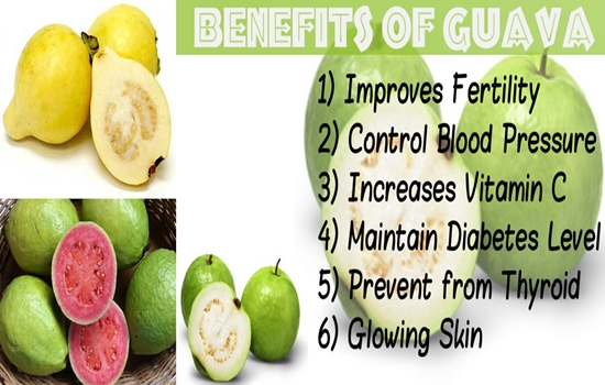 Reasons Will Make You Eat Guava Often