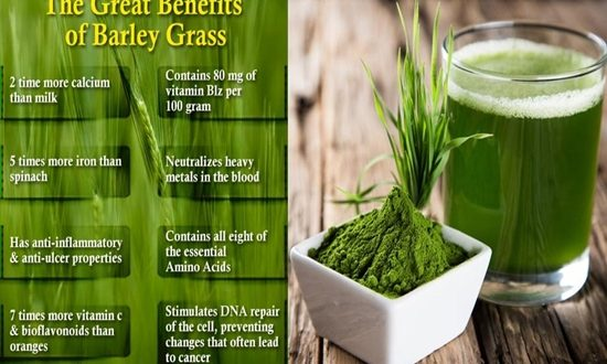 Benefits of Barley Grass