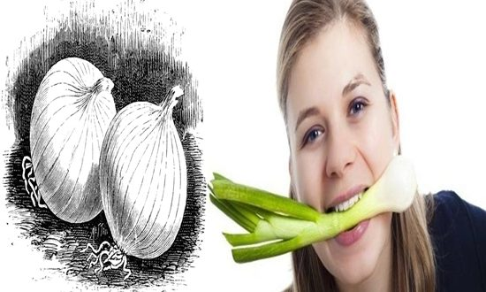 Diseases That Can Be Treated With Onion