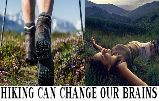 HIKING REALLY CHANGE OUR BRAINS