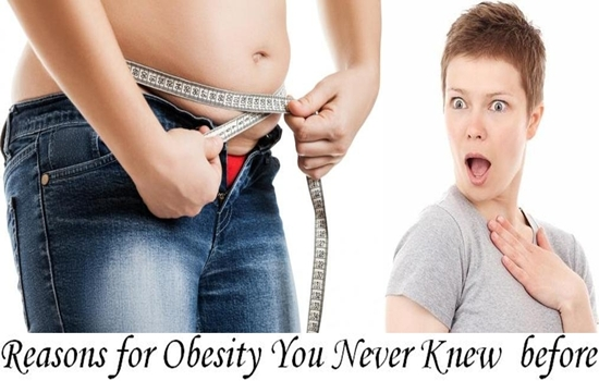 Reasons for Obesity You Never Knew about before