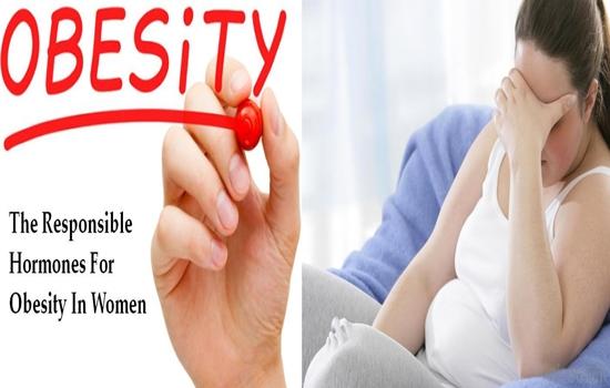The Responsible Hormones For Obesity In Women