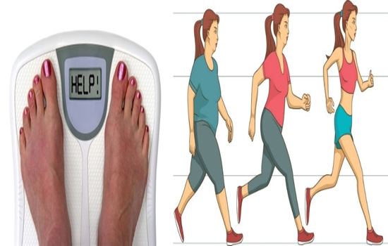 Affordable weight loss camps for adults australia