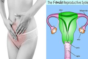 4 Health Facts You Can Learn from Your Menstrual Flow
