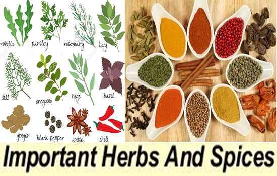 Important herbs and spices and their uses for health