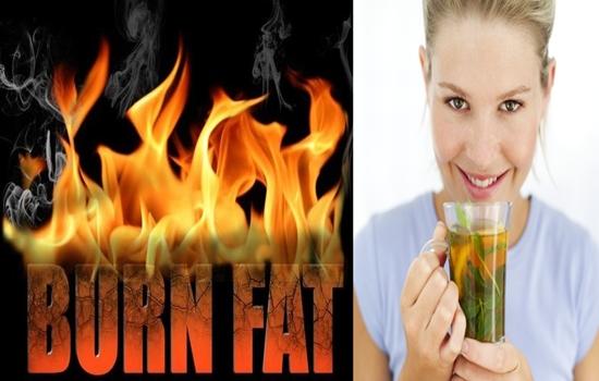 Super Fat Burning Recipes