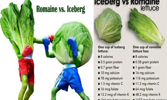 Which Is Better for You, Iceberg or Romaine Lettuce