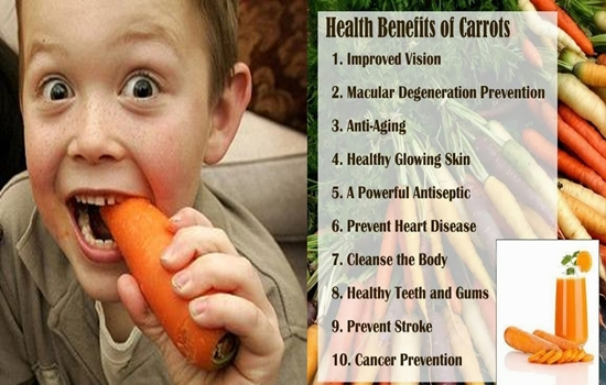 You Need to Include Carrots in Your Diet