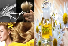 The top 6 benefits of chamomile oil for hair