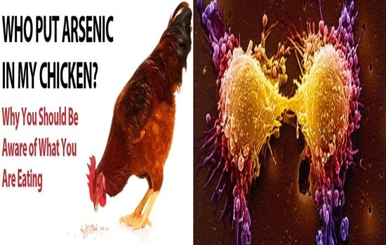 Over 75% Of the Chicken Meat Sold In The US Contains Cancer Causing Arsenic