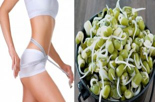 This Is Why You Should Start Including Sprouts To Your Diet