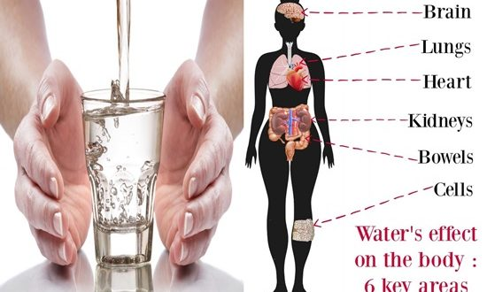 What A Glass Of Water Does To Our Body You Will Be Amazed
