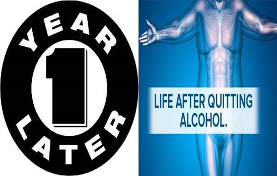 What Happens To Your Body During The Year After You Quit Drinking Alcohol