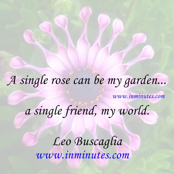 A single rose can be my garden single friend, my world Leo Buscaglia