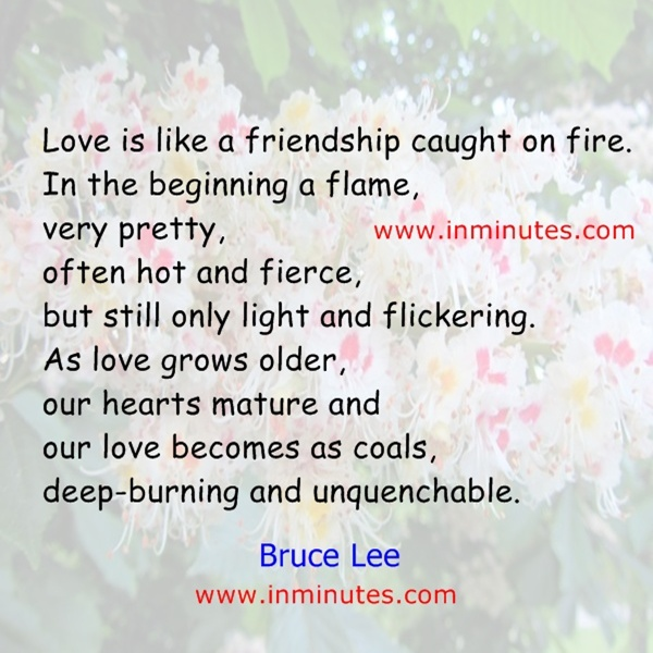 Love is like a friendship caught on fire In the beginning a flame very prettyoften