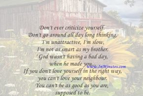 Don't ever criticize yourself. Don't go around all day long thinking, 'I'm unattractive, I'm slow, I'm not as smart as my brother.' God wasn't having a bad day when he made you... If you don't love yourself in the right way, you can't love your neighbour. You can't be as good as you are supposed to be.Joel Osteen